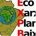 EcoxarxaPlanaBaixa