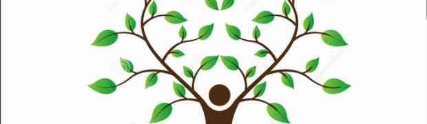 [Ecoxarxa Ebre] Ecoxarxes i moneda social